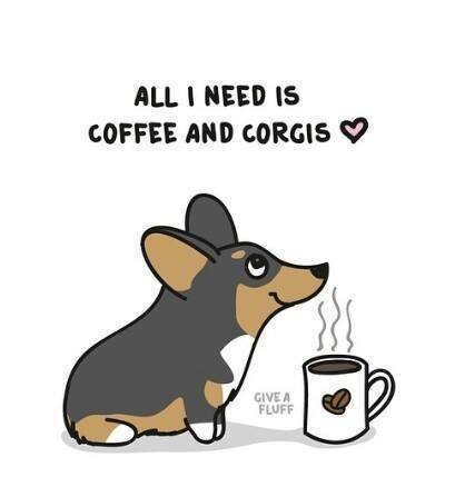coffee and corgis