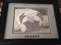 pug framed